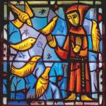 Vitrail de St François